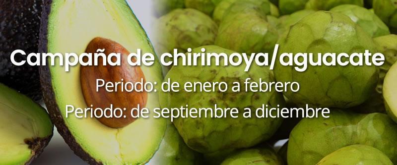 campana-chirimoya-aguacate INICIO